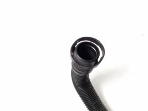 Žarna