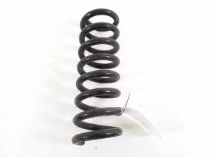 Rear spring
